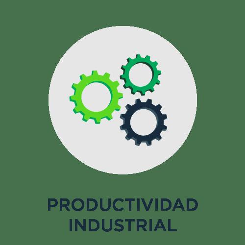 4.10 productividad industrial